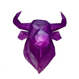 Cabeza de toro imagen principal